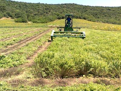 Επιδότηση για αγροτική παραγωγή 75%