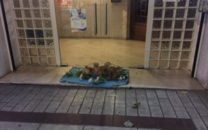 Πολίτης άφησε νεκρό σκύλο έξω από το δημαρχείο Αγρινίου
