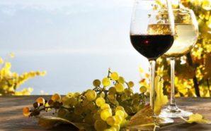 προβολή του ελληνικού κρασιού στις αγορές του εξωτερικού