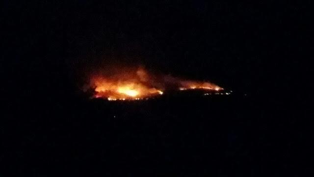 Φωτιές στα Αμπέλια και τη Ρίγανη Αιτωλοακαρνανίας