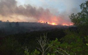 Υπό μερικό έλεγχο τέθηκε η φωτιά στα Αμπέλια Παρακαμπυλίων