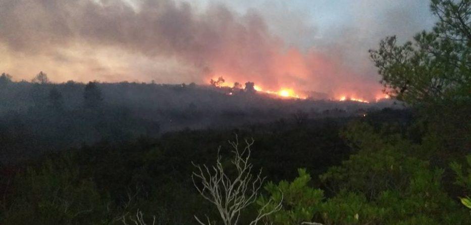 φωτιά στα Αμπέλια Παρακαμπυλίων