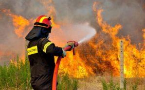 Φωτιά έχει ξεσπάσει σε προστατευόμενη δασική έκταση στην Καλογριά της…