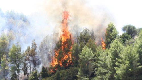 Πολύ δύσκολη η κατάσταση και στην Ηλεία λόγω των πυρκαγιών