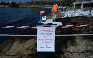 SOS: Η πετρελαιοκηλίδα έφτασε Λαγονήσι – Μικρά παιδιά έκαναν μπάνιο…