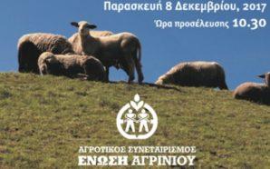 Αμφιλοχία: Ημερίδα για την κτηνοτροφία