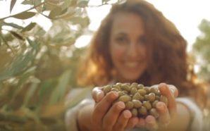 Ελλάδα: Ακαταμάχητη όλο το χρόνο – 365 Day Destination(Βίντεο)