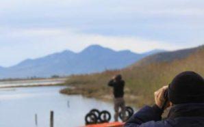 Καταμετρήσεις υδρόβιων πουλιών σε υγροτόπους της Αιτωλοακαρνανίας