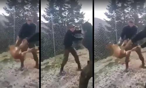 Βάρβαρη κακοποίηση σκύλου από φαντάρους στην Κόνιτσα