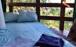Το… δεντρόσπιτο της Ζακύνθου στα καλύτερα της Ελλάδας
