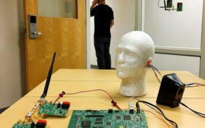 Ο εγκέφαλος έχει φυσικό κύκλωμα ακύρωσης θορύβου!