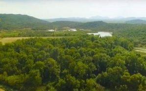Το σπάνιο δάσος του Φράξου στο Λεσίνι