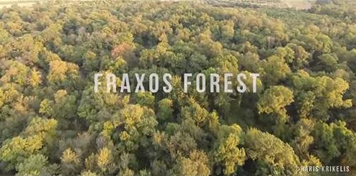 Fraxos Forest